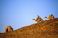 Egypt, Upper Egypt, Aswan, camel rider in the desert