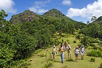 Seychelles, Mahe Island, hiking in the heart of the Morne Seychellois National Park with Jasmin Mount in the background