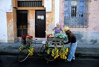 Cuba, Camaguey Province, Camaguey, Historic Centre of Camagüey listed as World Heritage by UNESCO Camaguey, flowar pedlar