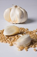 Close_up of garlic on wheat grains