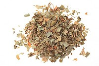 Medicinal plant American liverwort, Hepatica, Liverleaf, Hepatica nobilis, Anemone hepatice