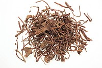 dried roots of the medicinal plant Aster tataricus, Purple Aster Root, Zi Wan