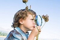 Boy 4_7 looking at flower through magnifying glass, outdoors