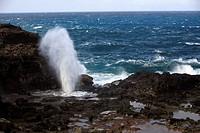 Nakalele blowhole erupting. This geyser_like effect is caused by waves forcing water and air through a lava tunnel that ends at the shoreline. Photogr...