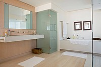 Modern domestic bathroom interior with bath