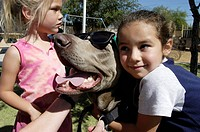 Animal therapy with pet dogs. Children playing with a dog at a centre that uses animal therapy to treat children who are at risk of, or who have suffe...
