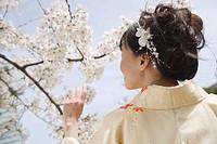 Woman Dressed in Kimono