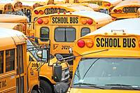 a mosaic of American school buses
