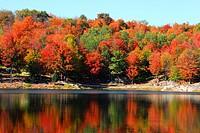 Autumns landscape