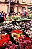 France, Bouches du Rhone, Aix en Provence, flower market on town hall square