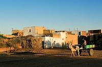 Egypt, Upper Egypt, Libyan Desert, Dakhla Oasis, Balat