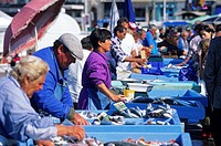 France, Bouches du Rhone, Marseille, fish market in Vieux Port