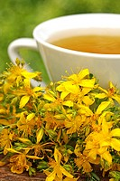 Saint John's Wort infusion (Hypericum perforatum)