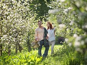Couple With Picnic In Orchard