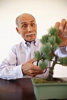 Senior man pruning potted plant