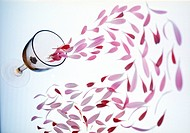 View of pink petals dropping from a wineglass