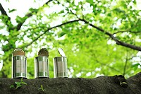 Open tin cans on tree trunk, low angle view