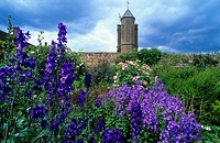 Europe, Great Britain, England, Sissinghurst Castle, Sissinghurst´s garden was created in the 1930s by Vita Sackville_West, poet and gardening writer,...