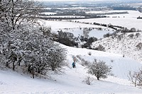 Couple taking walk on snow covered downland, Clipper Down, Chilterns, Buckinghamshire, England, winter
