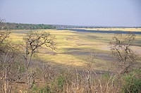 Chobe River, view from Chobe Chilwero Camp, Chobe N P , Botswana