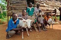 Family holding domestic goats, sitting outside wooden hut, Western Kenya