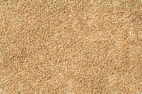 Rice grains, close_up