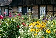Cottage garden, Muensterland, North Rhine_Westphalia, Germany