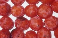 Japanese Persimmon variety Hachiya Diospyros kaki