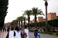 People and palm trees in front of the city wall at dusk, Taroudannt, South Morocco, Morocco, Africa
