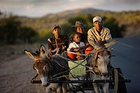 Family on a cart pulled by a donkey, Windhoek, Namibia, Africa