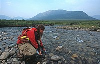 Mining employee collects water sample for base line analysis and PH level, North River, Pelly Mountains, Yukon Territory, Canada
