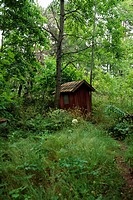 Small shed in the wood.