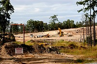 Forest Destruction Destruction of virgin bush for suburban development _ SE Queensland, Australia