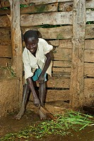 Boy sweeping organic farmyard manure from ground into collection tank, Western Africa