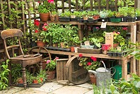 Garden plant stall, selling herbs, vegetable seedlings and bedding plants, in urban garden, England