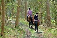 Two girls on horseback, riding along woodland track, Hertfordshire, England, early spring