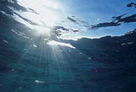 Rays of sunlight beneath the water surface.
