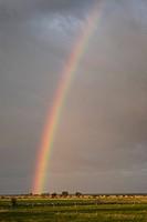 Rainbow,OLAND,SWEDEN