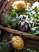 Cauliflower broccoli and globe artichoke in a basket Sweden.
