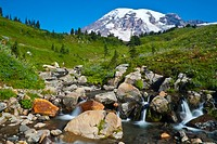 Mount Rainier and Edith Creek
