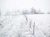 Winter lanscape Sweden