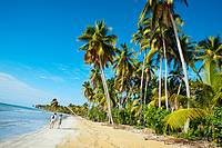Playa Bonita. Las Terrenas. Samana Peninsula. Dominican Republic. West Indies. Caribbean.
