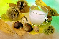 CHESTNUT MILK