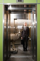 Businessman and deer standing in elevator
