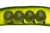 Four peas in a pod on white background