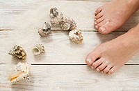 Female feet and seashells