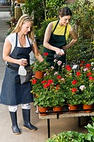 Two women spraying water on plants