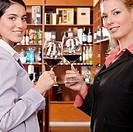 Two businesswomen toasting with wine in a bar