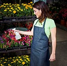 Woman spraying water on flowers in a greenhouse