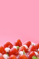 Strawberry tart, close up, red background, copy space